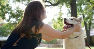 Pet têm o divertimento perto da aeromoça no ar livre, proprietário que afaga e abraçam seu cão ronco no parque vídeos de arquivo