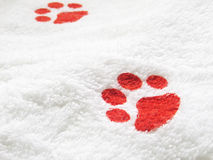 Pet Towel Stock Photo