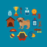 Pet training concept with dog care elements. Royalty Free Stock Photography