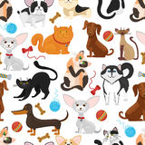 Pet vector background. Dogs and cats seamless pattern Royalty Free Stock Photo