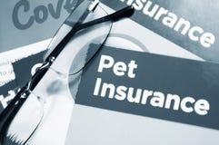 Pet Versicherung Lizenzfreie Stockfotos