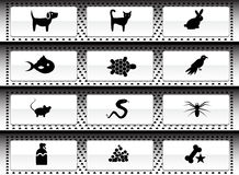 Pet web buttons - black and white. Set of 12 pet web buttons - black and white style Royalty Free Stock Images