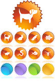 Pet web buttons - Seal Royalty Free Stock Photos