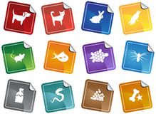Pet web buttons - sticker. Set of 12 pet web buttons - sticker style Stock Photography