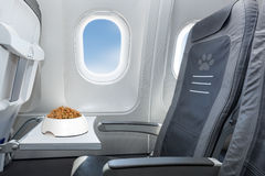 Pet welcome on board Stock Photos