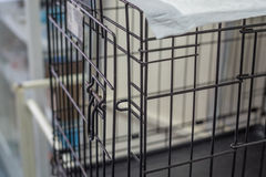 Pet wire crate or animal cage Royalty Free Stock Photography