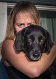 Pet Royalty Free Stock Photo