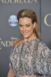 Peta Murgatroyd Stock Photo