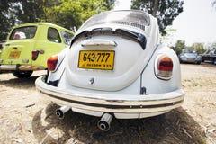 PETAH TIQWA, ISRAEL - MAJ 14, 2016: Bakre del av en Volkswagen Beetle i Petah Tiqwa, Israel Arkivfoton