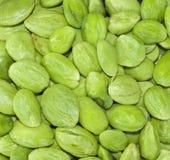 Petai, Bitter Beans Stock Images