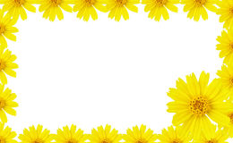 Petal border Royalty Free Stock Images