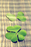 Petal of clover on old wooden background. St. Patricks Day Stock Image