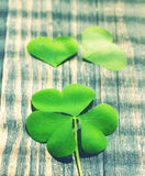 Petal of clover on old wooden background. St. Patricks Day Royalty Free Stock Photo