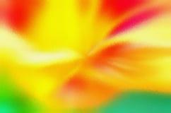 petal delikatnie Zdjęcia Royalty Free
