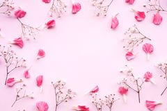 Petal flower on pink background with copy space.Flat lay.