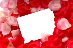 petal notecard rose Obrazy Royalty Free