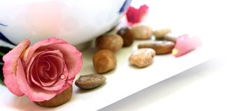 Petal and pebble therapy. Setting for spa including pink roses and petals, pebbles and a bowl of water, isolated on white Stock Images