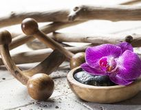 Petal and wood for ayurveda or feng shui mindset. Closeup on pink orchid and black pebbles with wood and limestone background for beauty spa Stock Photography