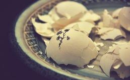 Petaled Flower Drawing on White Egg Shell Stock Photo