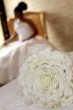 petalen steg Royaltyfri Fotografi