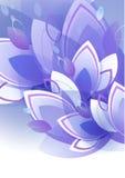 petali Fotografia Stock Libera da Diritti