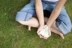 Petali ambientali di picnic Fotografia Stock Libera da Diritti