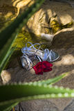 Petali con le scarpe e la cascata nel fondo Immagine Stock