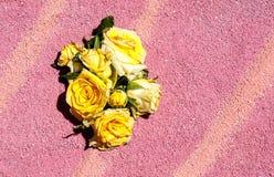 Petali del fiore Immagini Stock