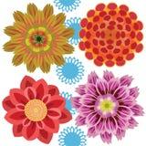 Petali del fiore complessi Fotografie Stock