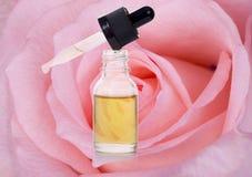 Petali del fiore della rosa di rosa ed olio essenziale Immagine Stock Libera da Diritti