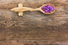 Petali del fiore fresco in un cucchiaio di legno Immagine Stock