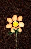 Petali dell'uovo Immagine Stock