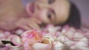 Petali di Rosa fresca e bocciolo di rosa rosa Fronte vago della donna con il clea fotografia stock