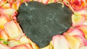 Petali di Rosa in molti colori con un cuore dell'ardesia Immagine Stock Libera da Diritti