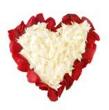 Petali di Rosa nella figura di cuore Fotografia Stock Libera da Diritti
