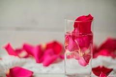 Petali di Rosa in una ciotola di acqua Immagini Stock Libere da Diritti