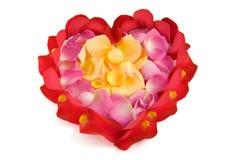 Petali di Rosa in una figura del cuore Immagine Stock