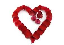 Petali di Rosa in una figura di un cuore Fotografie Stock Libere da Diritti