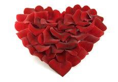 Petali di Rosa in una figura di un cuore Fotografia Stock