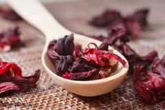 Petali di tè su un primo piano di legno del cucchiaio Macro foto dell'animale domestico rosso Fotografie Stock