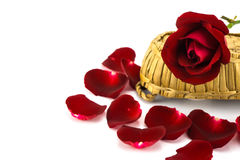 Petali e rose rosse su un fondo bianco Immagine Stock