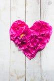 Petali nella forma del cuore Fotografie Stock Libere da Diritti