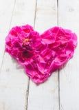 Petali nella forma del cuore Fotografie Stock