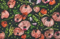 Petali rosa e rossi del fiore, rami verdi e foglie Fotografie Stock Libere da Diritti