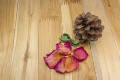Petali rosa secchi su legno con il pino del cono Fotografia Stock