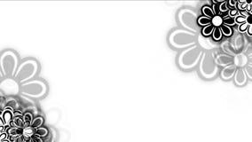 petali selvaggi del fiore della margherita 4k, fioritura della pianta della molla, fondo romanzesco di nozze di amore stock footage