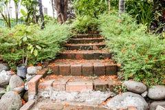Petali sulle scale nel giardino Fotografia Stock Libera da Diritti