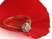 Petalo di Rosa ed anello di diamante Immagini Stock