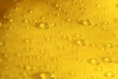 Petalo giallo Fotografia Stock Libera da Diritti
