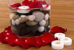 Petals Royalty Free Stock Photos